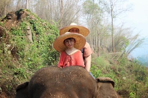 elephantchiangmai